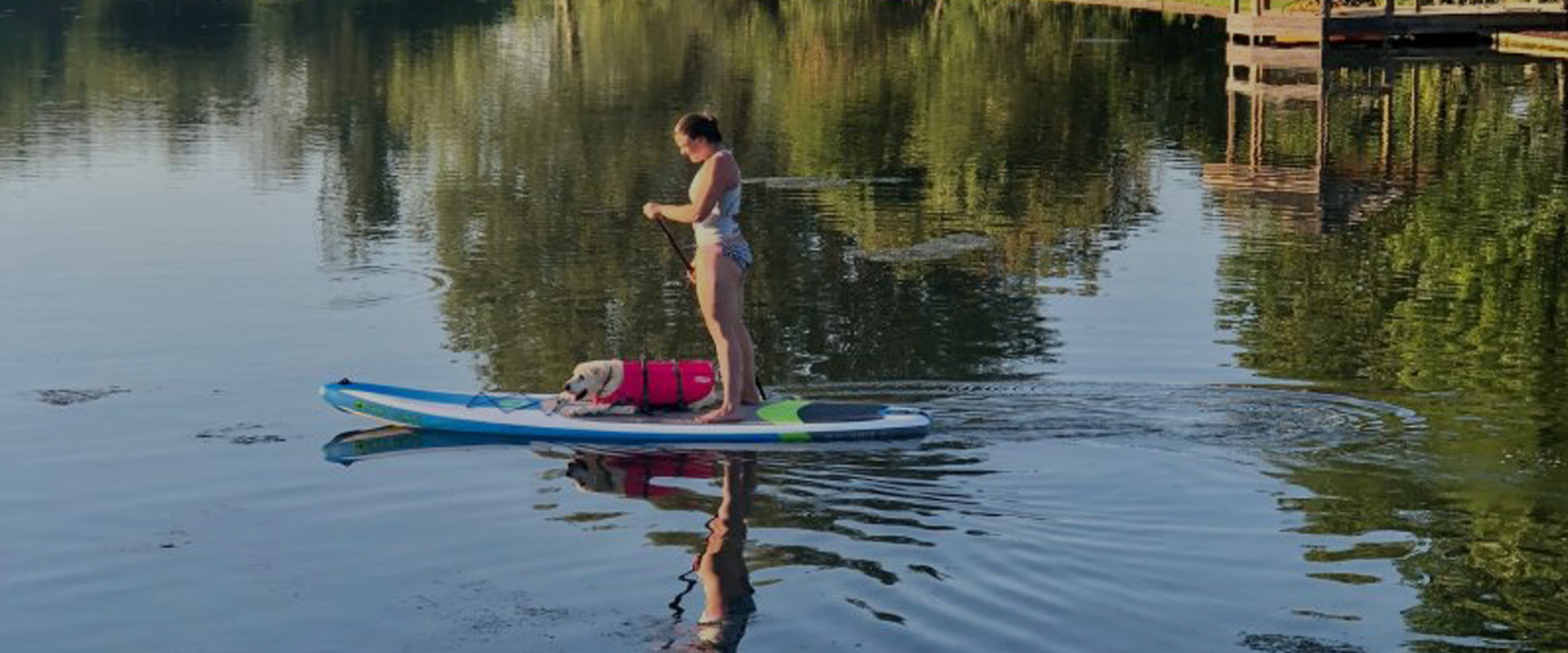 Woman and dog paddle boarding on our lake